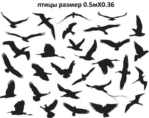 5. птицы раз. 0.5мХ0.36