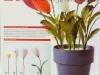 cvety-iz-perev-22