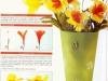 cvety-iz-perev-26