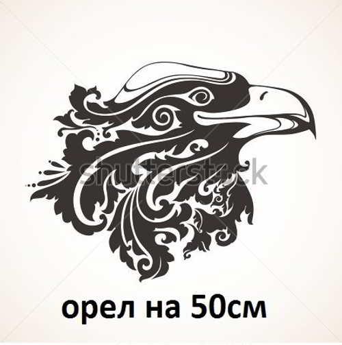 4. орел на 50см