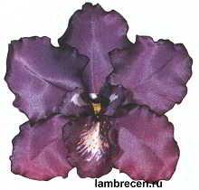 cvety iz tkani 6